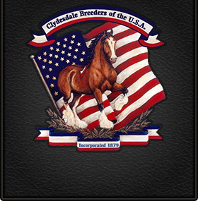 Clydesdale Breeders of the USA