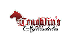 Coughlins Clydesdales